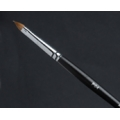 P4A Lip Precision Brush