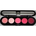 PAL17 PINK Lip Palette